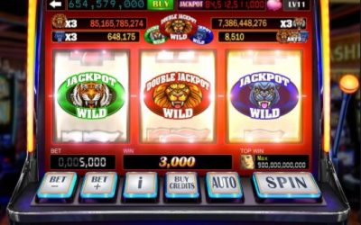 Slot Machine Advice, Facts & Myths Exposed!